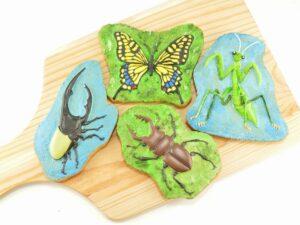 昆虫クッキーセット